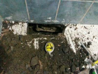 su-kacagi-nasil-tespit-edilir